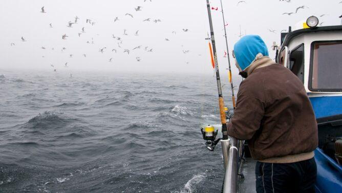 """""""Przełowienie w stosunku do wszystkich stad ryb miało się zakończyć do 2020 roku. To się nie udało"""""""